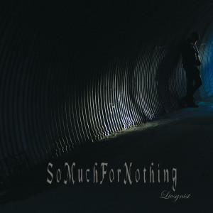 SoMuchForNothingCover